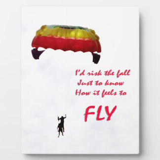 Just to know how it feels to fly plaque