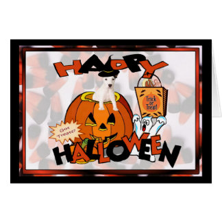 Just Too Cute Jack Russell Peeking Out of Pumpkin Card