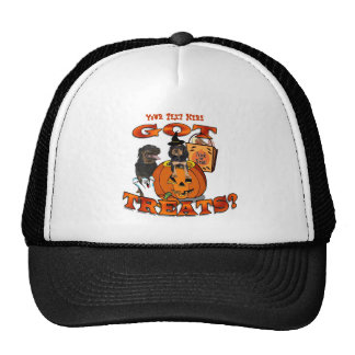 Just Too Cute Rottweiler Puppy Accompanied by Papa Trucker Hat