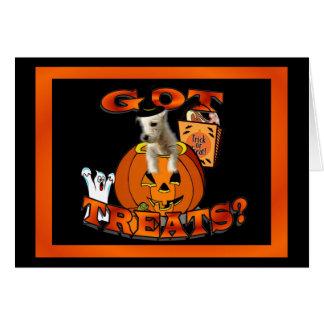 Just Too Cute Westie Puppy, Peeking Out of Pumpkin Card
