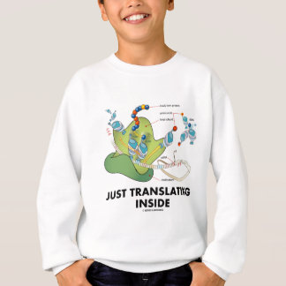 Just Translating Inside (Protein Synthesis)