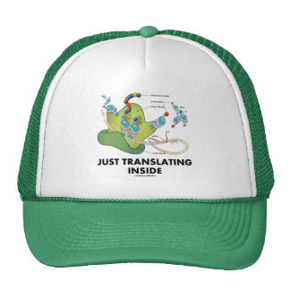 Just Translating Inside (Protein Synthesis) Mesh Hat