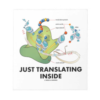 Just Translating Inside (Protein Synthesis) Notepad