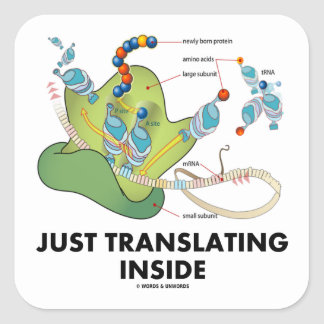 Just Translating Inside (Protein Synthesis) Square Sticker
