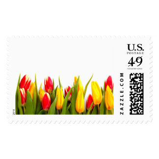 Just Tulips 2 Large Postage