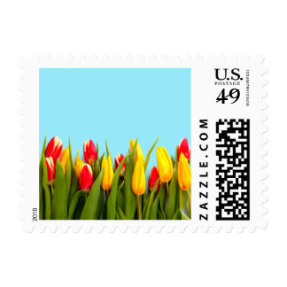 Just Tulips Small Postage Stamp