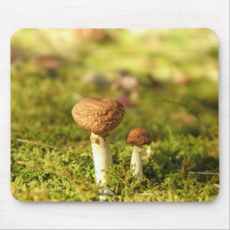 Just Us Two Mushrooms Mouse Pad