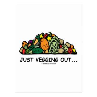 Just Vegging Out... (Vegetarian Humor) Postcard