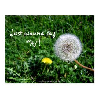 "Just wanna say ""Hi""! Dandelions Greetings Postcard"