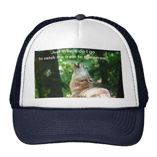 Just where do I go to catch the train to tomorrow Trucker Hats