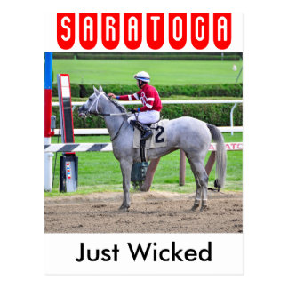 Just Wicked Reflects Postcard