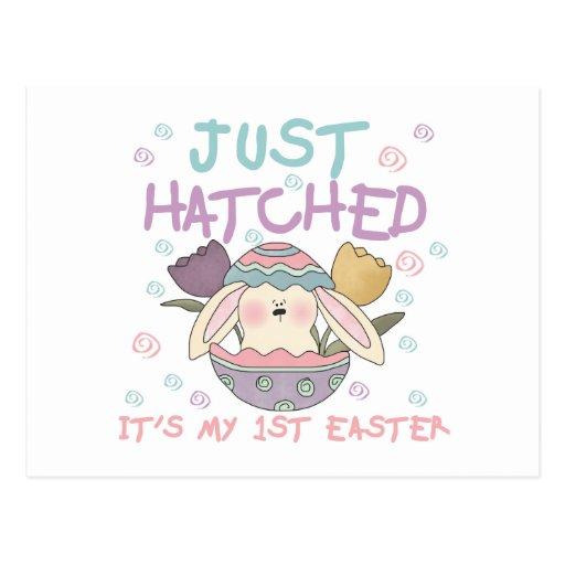 justhatchedeastertee postcard
