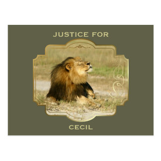 Justice for Cecil the Lion Killed in Africa Postcard