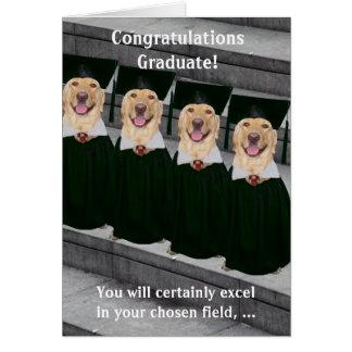 Justicia penal de la graduación tarjetón