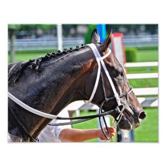 Justin Phillip captures the 2013 Vanderbilt Stakes Art Photo