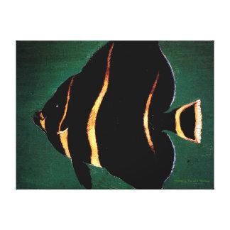 Juvenile Angel Fish - William Aiken Walker Canvas Print