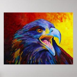 Juvenile Bald Eagle Print - by Corina St. Martin print