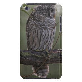Juvenile Barred Owl (Strix varia) 2 iPod Touch Case