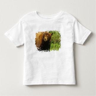 Juvenile black bear at Waterton Lakes National Toddler T-shirt