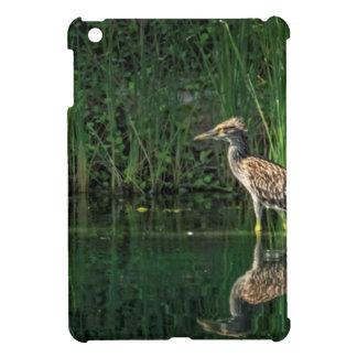 Juvenile Black Crowned Night Heron Cover For The iPad Mini