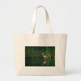 Juvenile Black Crowned Night Heron Large Tote Bag