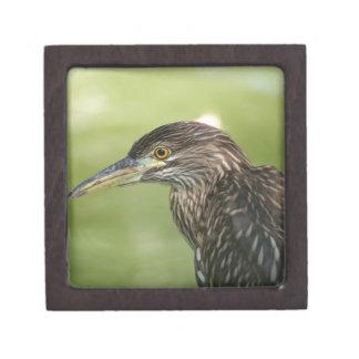 Juvenile Black Crowned Night Heron Premium Jewelry Boxes