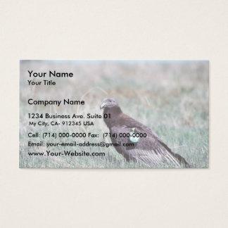 Juvenile Condor Business Card