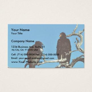 Juvenile Condors Business Card