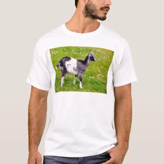 Juvenile goat on grass T-Shirt