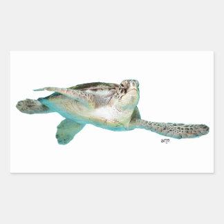 Juvenile Green Sea Turtle Rectangular Sticker
