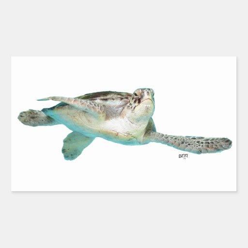 Juvenile Green Sea Turtle Rectangle Stickers