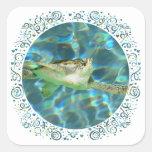 Juvenile Green Sea Turtle Stickers
