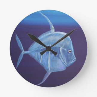 Juvenile Look down fish. Round Clock