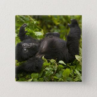 Juvenile Mountain Gorilla 2 Pinback Button