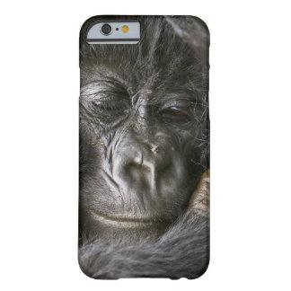 Juvenile Mountain Gorilla 4 Barely There iPhone 6 Case