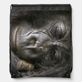 Juvenile Mountain Gorilla 4 Drawstring Bags