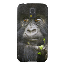 Juvenile Mountain Gorilla feeds on tender leaves 2 Galaxy S5 Case