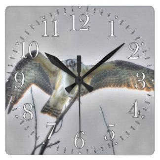 Juvenile Osprey Fish-Eagle Wildlife Photo Scene Square Wall Clock