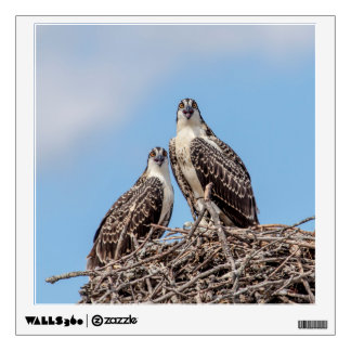 Juvenile Osprey in the nest Wall Graphic