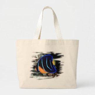 Juvenile Queen Angelfish Bags