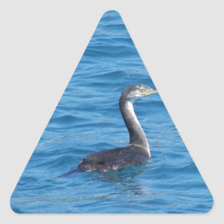 Juvenile Shag fishing Triangle Sticker