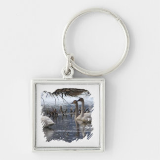 Juvenile Swans Keychain