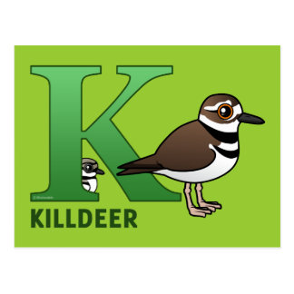 K is for Killdeer Postcard