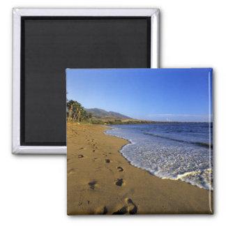 Kaanapali beach, Maui, Hawaii, USA 2 Inch Square Magnet