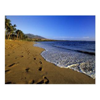 Kaanapali beach, Maui, Hawaii, USA Post Cards