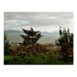 Kachemak Bay Postcard