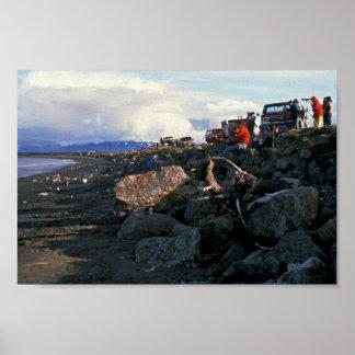 Kachemak Bay Shorebird Festival 1993 Print