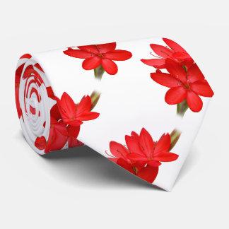 Kaffir Lily / River Lily / Hesperantha Coccinea Neck Tie