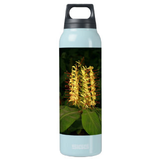 Kahili ginger insulated water bottle