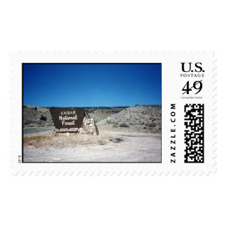 Kaibab National Forest Sign Postage Stamp